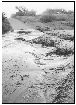Within a minute, a nearly dry creek bed can become a roaring torrent, totally submerging the road. (Photo by Jack Shaffer, Arizona Daily Star. Reproduced by permission.)